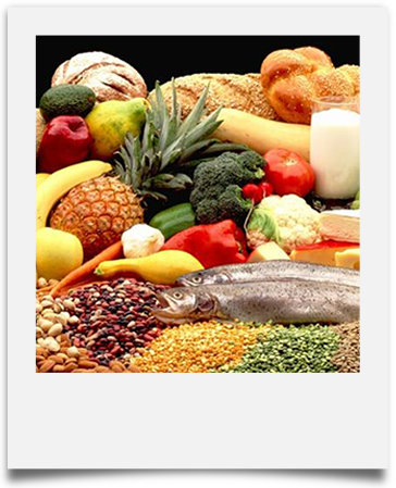 Nutritional Counseling | Body By Willpower